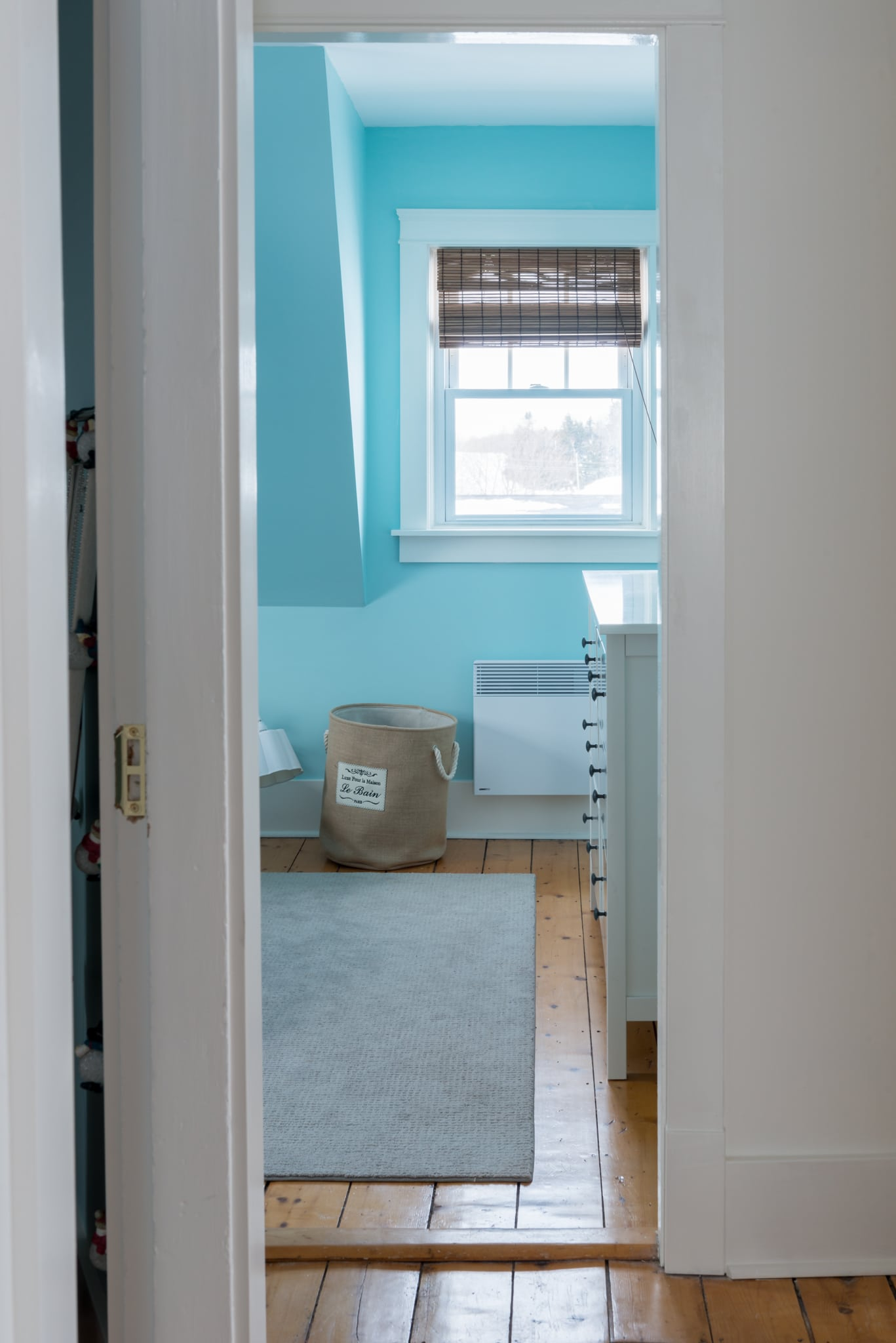 Benjamin Moore Bird's Eye Blue Bedroom