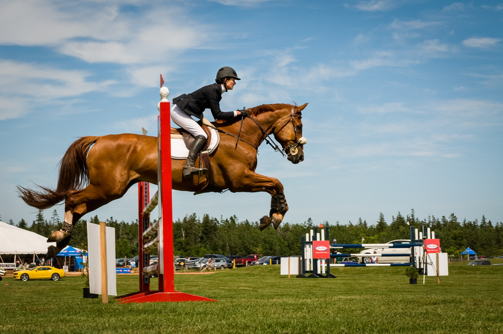 Gingerwood Charity Classic horse show