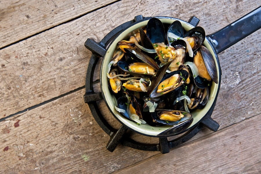 Mussel Recipes – Steemed
