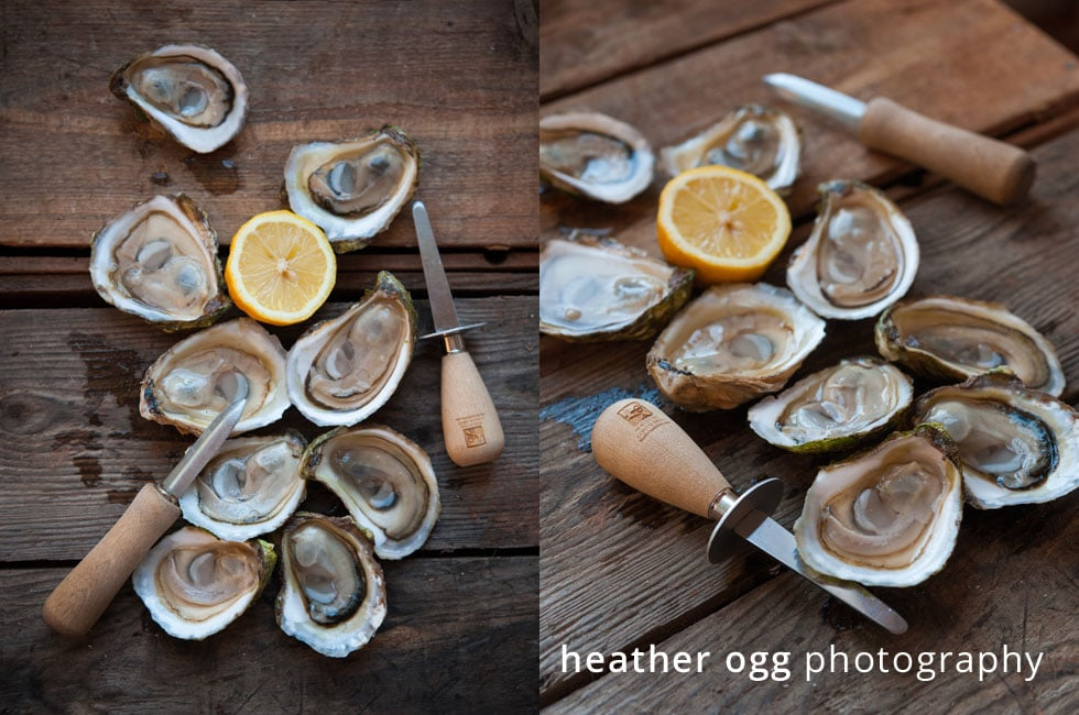 North Cape Coastal Drive Oysters