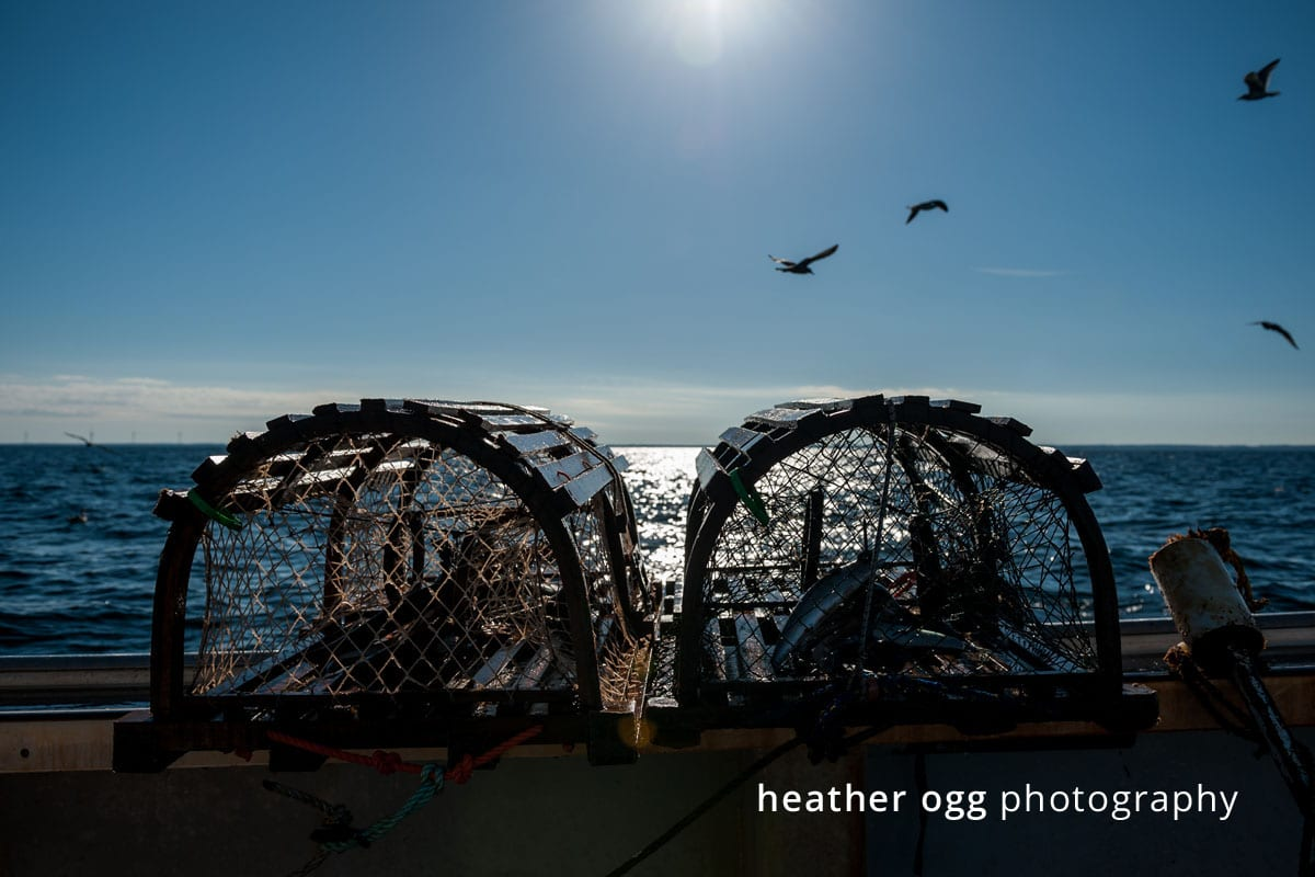 Royal Star Foods - Lobster Boat-3