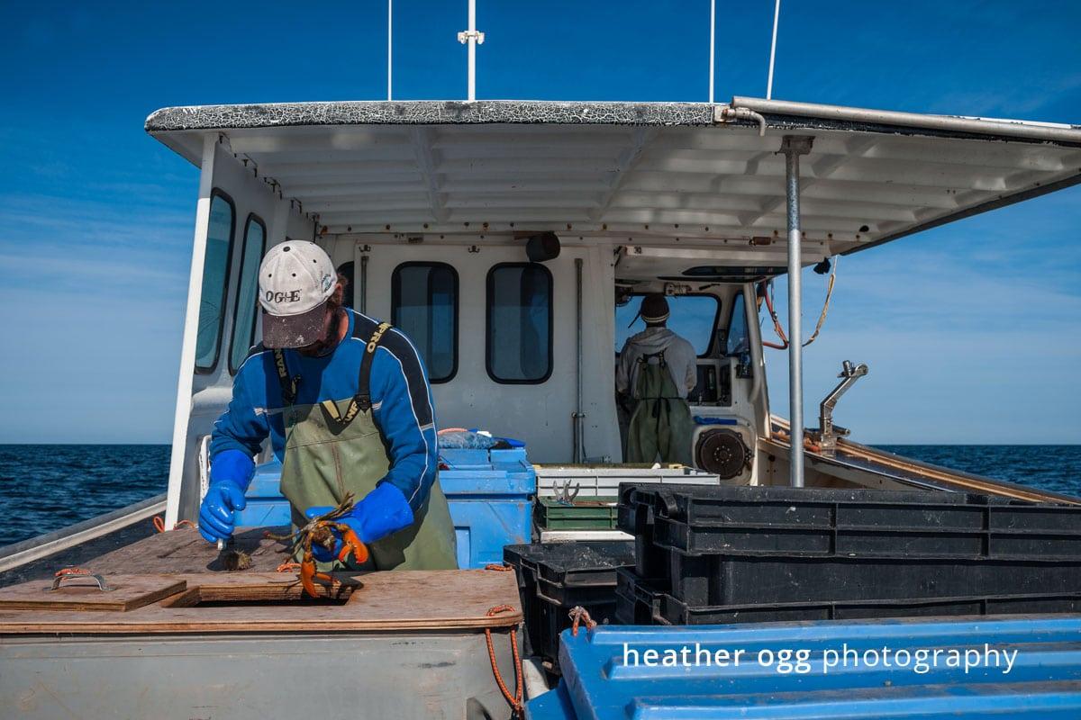 Royal Star Foods - Lobster Boat-31