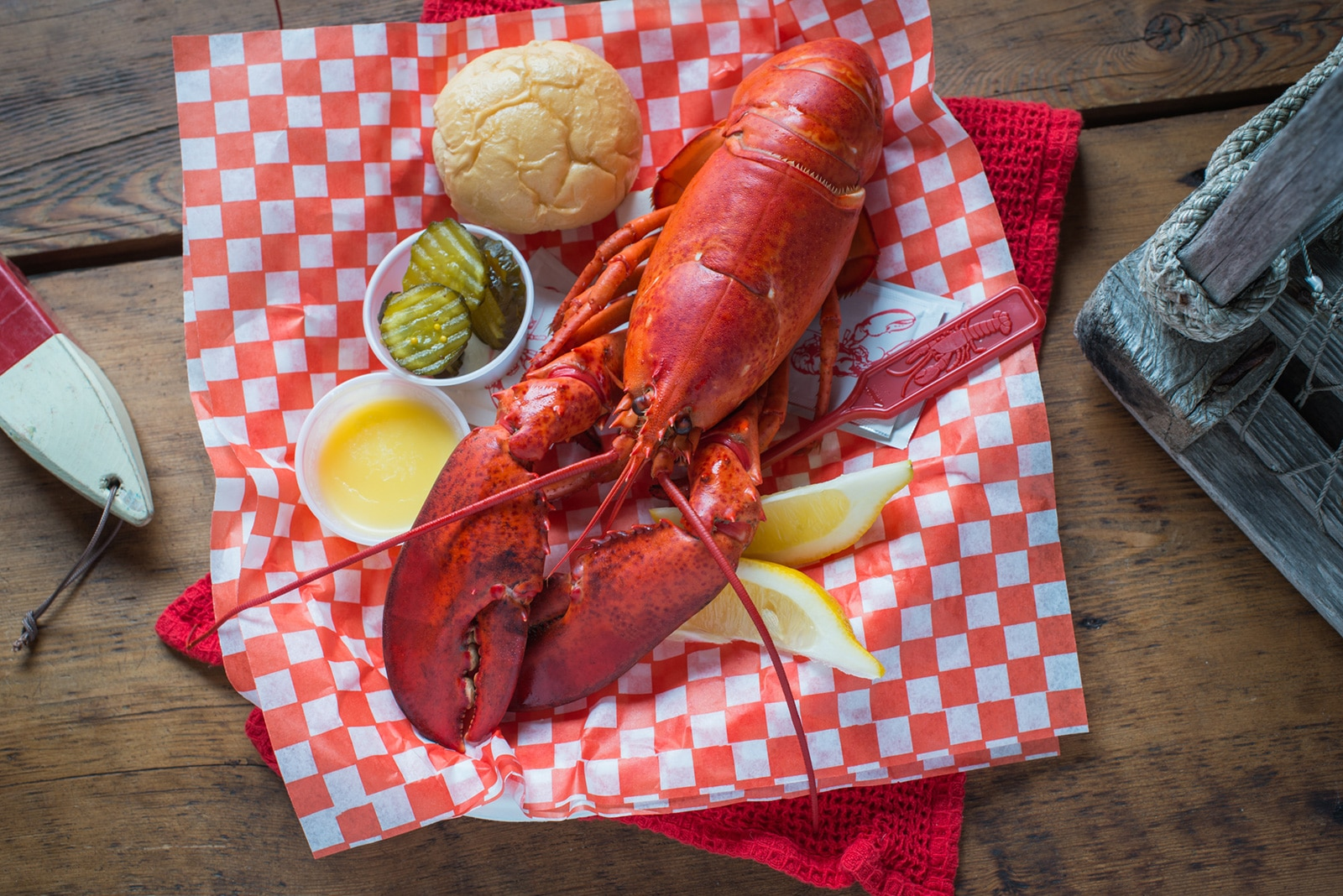 Colville Bay Oysters, The Lobster Shack Lobster