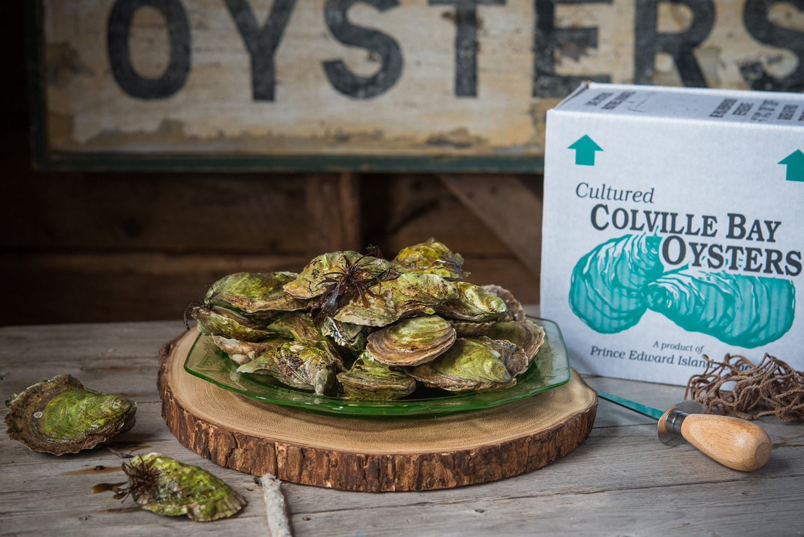 Colville Bay Oysters