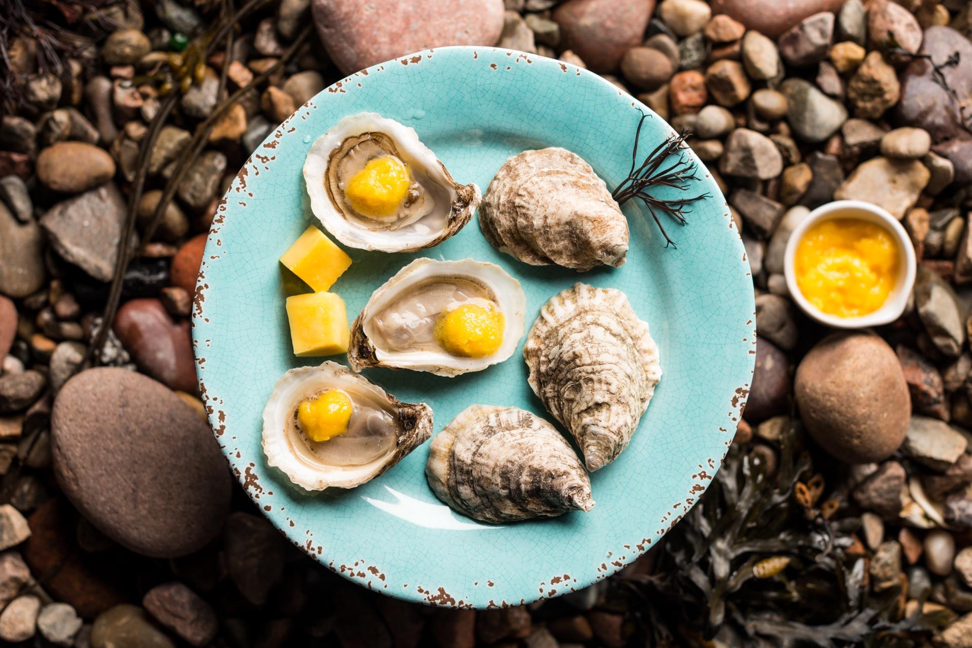 Merasheen Bay Oysters